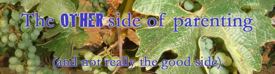 Grapes, Gripes & Gratitude